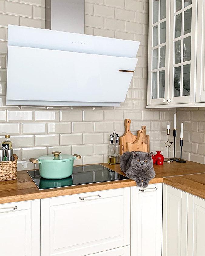 Индукционная плита или электрическая панель?